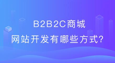 分享b2b2c商城网站开发有哪些方式