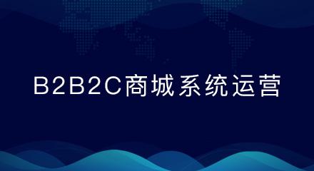 b2b2c商城系统怎样才能留住新用户?这里给你支招!
