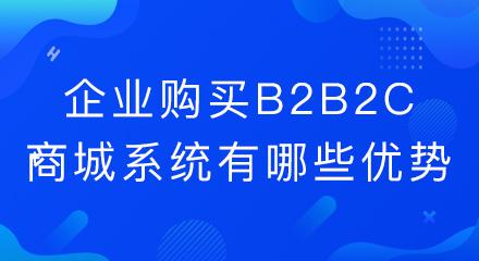 企业购买b2b2c商城系统有哪些优势