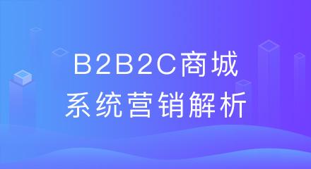 企业搭建了b2b2c商城系统,这些营销常识要清楚!