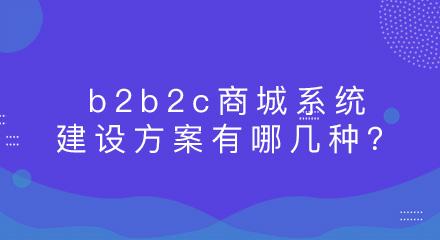 b2b2c商城系统建设方案有哪几种?