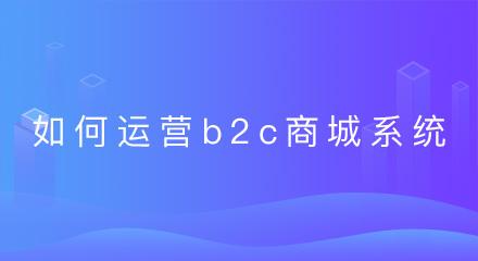 企业如何运营b2c商城系统?