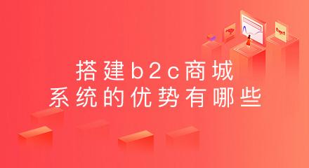 搭建b2c商城系统的优势有哪些?