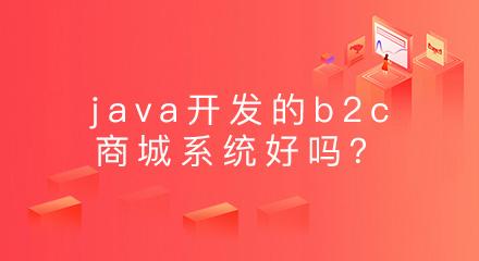 java开发的b2c商城系统好吗?