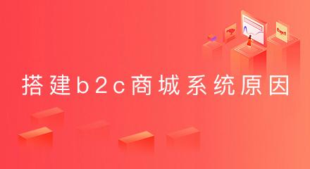 搭建b2c商城系统的理由是什么?