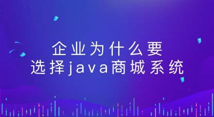 为什么要选择java商城系统?原因在这!