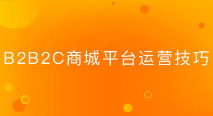 b2b2c商城平台运营技巧
