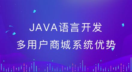 java语言开发多用户商城系统优势