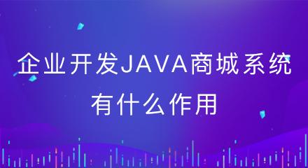 企业开发java商城系统有什么作用