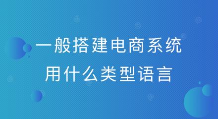 一般搭建电商系统用什么类型语言?