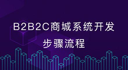B2B2C商城系统开发的步骤流程
