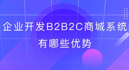 企业开发b2b2c商城系统有哪些优势?
